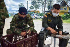 Ejército y ESMAD compartieron alimento y destacaron buen comportamiento de manifestantes - Noticias de Colombia